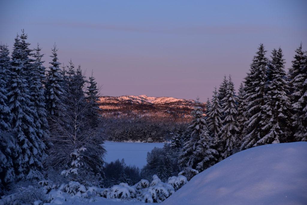 Med nærheten til fjell og vann er Gautestad et flott sted for ei helårshytte.