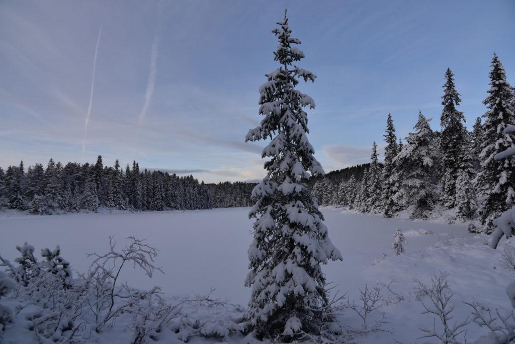 Lauvaas hyttefelt med utsikt over Botntjorna