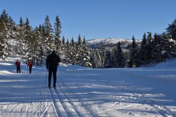 Med utsikt til Himmelsyna fra skiløypene på Høgås.