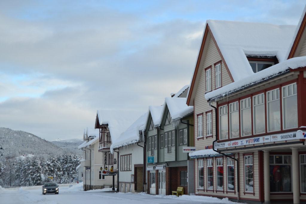 Ta en hyggelig shoppingtur på Evje før du dra til hytta på Gautestad.